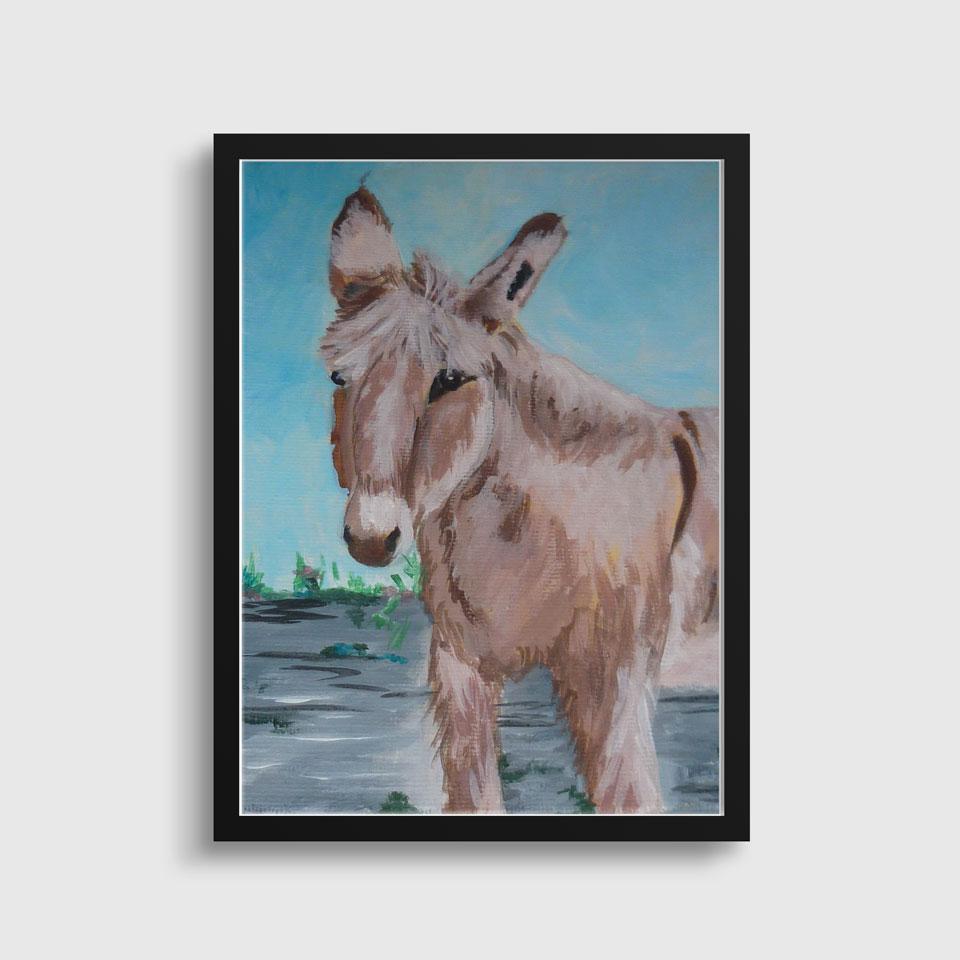 dipinti-asino